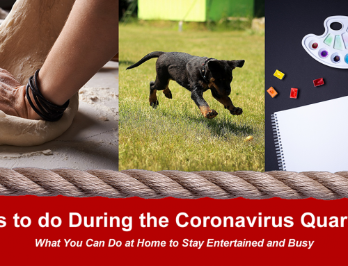 Things You Can Do at Home During the Coronavirus Quarantine in Montrose