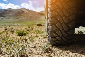 Before you go off-roading, be sure to have the right tires for the trail.