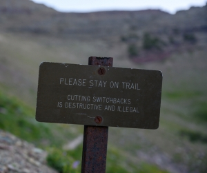 Please stay on the trail when off-roading
